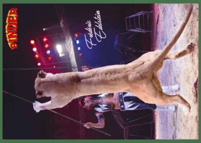 carterie-cartes-postales-10,5x15 a6-cirque-pinder-frederic-edelestein-lionne-debout promocyrk promocirque