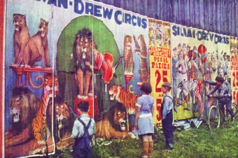 affichage affiches de cirque editos promocyrk
